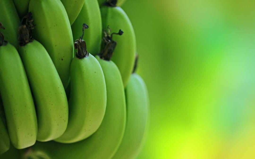 Cómo salvar fruta en banano en tiempo real