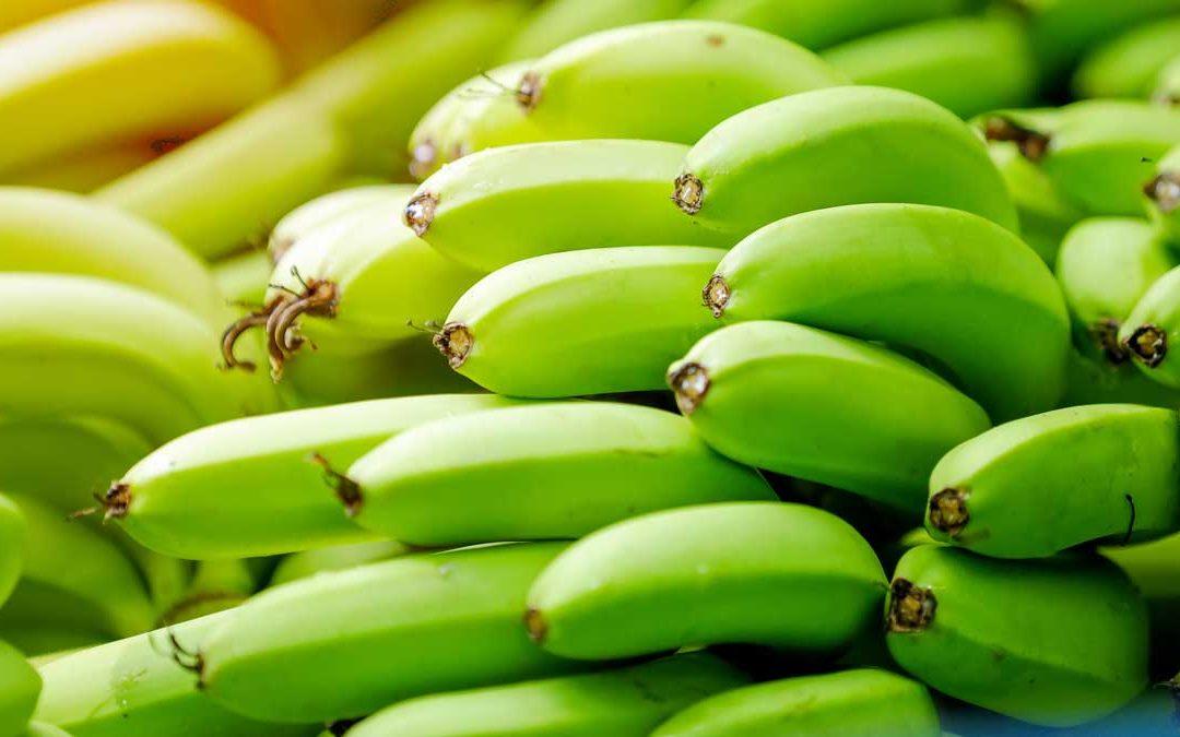 Analisis de merma en banano